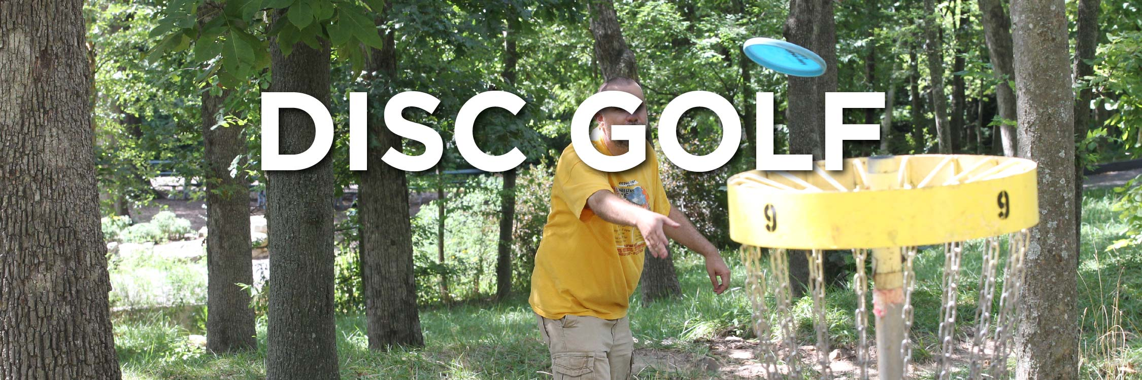 Disc Golf Web Strip-02