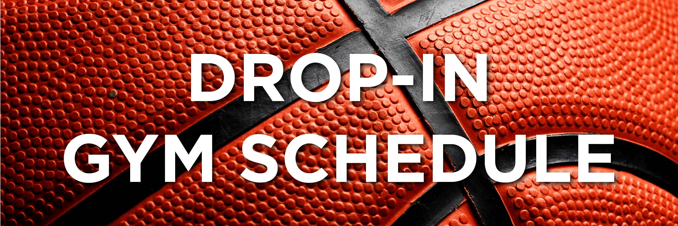 Drop In Gym Schedule Web Strip-03